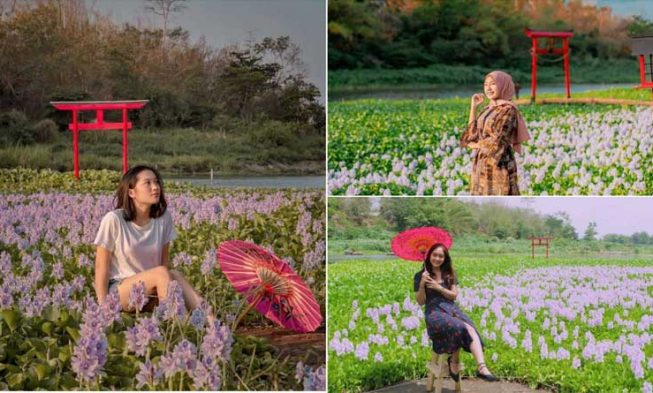 Kalinampu Natural Park Salah Satu Spot Selfie Paling Hits Di Jogjakarta Rekomendasi Objek Wisata Dengan Htm Murmer