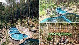 Wisata Kampoeng Ciherang, Tempat Ngadem dengan Hamparan Pinus yang Menakjubkan | Cek Keunikannya!